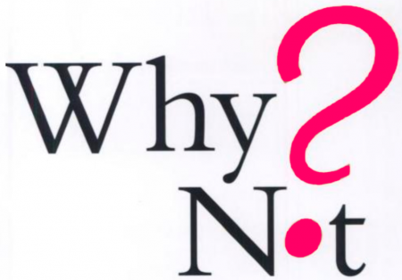 why-not1-450×314