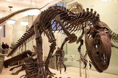 dinosaur-skeleton.jpg.696x0_q70_crop-smart